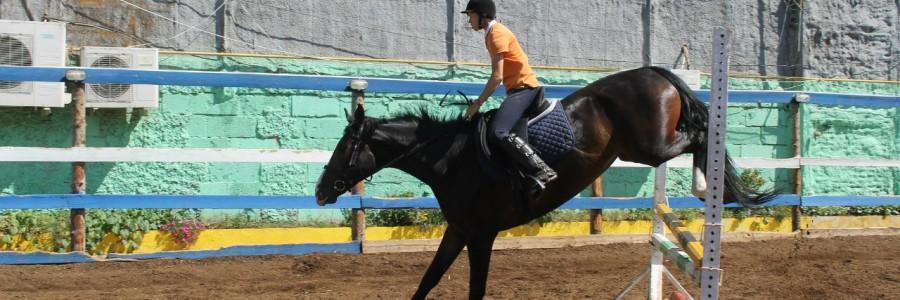 Федерация конного спорта Астраханской области