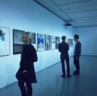 Астраханская картинная галерея  стала участником масштабного выставочного проекта