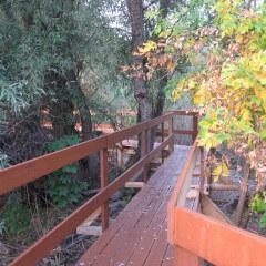 Экологическая тропа — экомаршрут по заповедным уголками Дельты знакомит с их обитателями