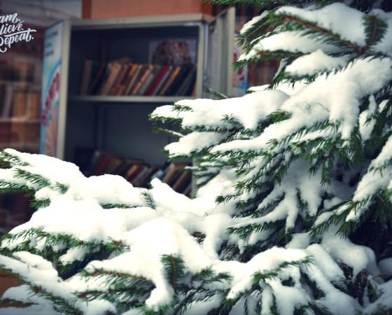 В библиотеке пройдёт цикл новогодних мероприятий