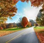 Куда поехать на ноябрьские праздники