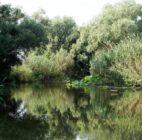 В Астраханской области создана уникальная особо охраняемая природная территория